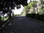 entrada al ingenio Bolivar